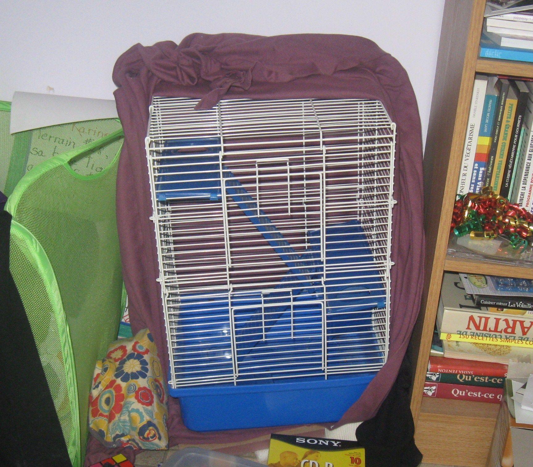 cage rat vendre. Black Bedroom Furniture Sets. Home Design Ideas
